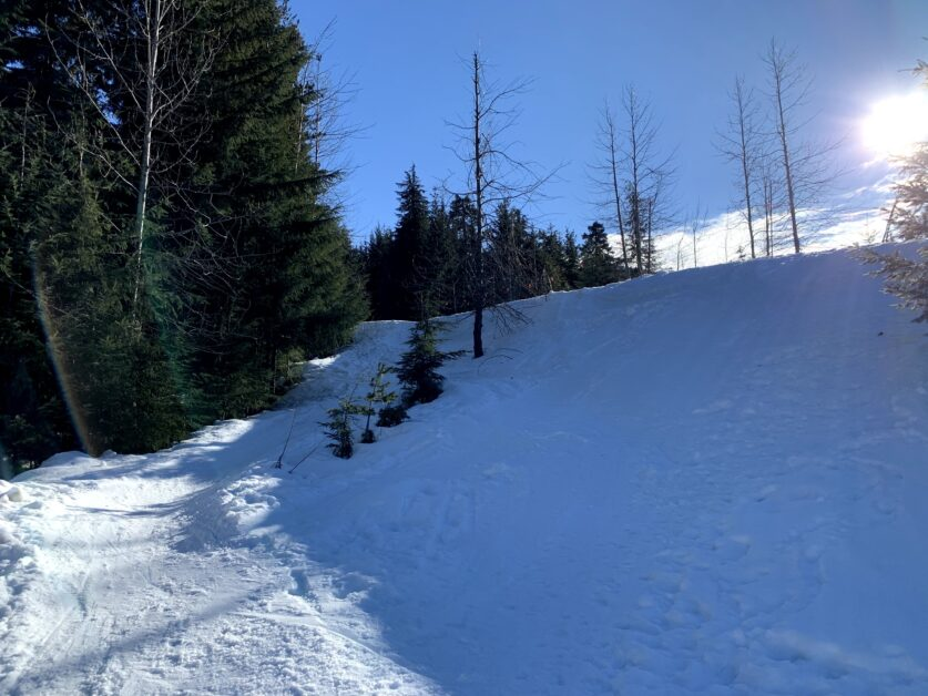 Snowy Creek ski-in and ski-out access