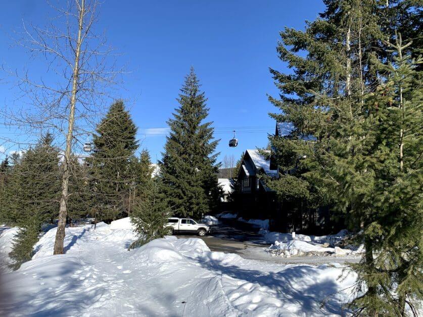 Snowy Creek path ski out