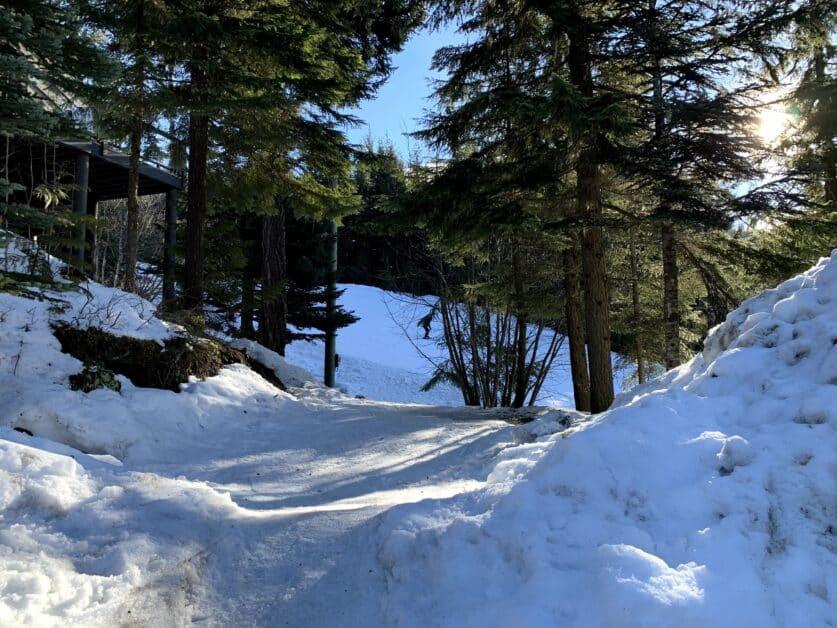 Cedar Ridge Ski-in ski-out at #1